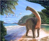 حكايات  الديناصورات تعود لمصر.. مفاجآت فريق بحثي عن حيوانات آكلة اللحوم