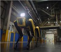 الروبوت SPOT «مسؤول سلامة» بمصانع كوريا الجنوبية   فيديو