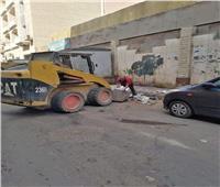 إزالة 15 حالات تعدي على أملاك الدولة بسمالوط في المنيا