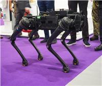الكشف عن روبوت للاستخدامات العسكرية والمراقبة | فيديو