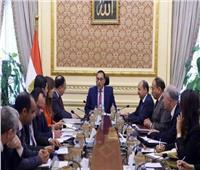 الحكومه تستجيب للنائبة أميرة أبو شقة بشأن تقنين عوائد السوشيال ميديا