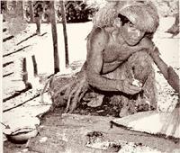 أقدم طرق التخدير للإنسان والحيوان.. عمرها نصف قرن