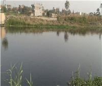 6 ملايين متر مكعب حجم المياه الملوثة التي تستقبلها بحيرة المنزلة