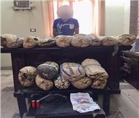 سقوط تاجر مخدرات بـ60 كيلو بانجو بالغربية