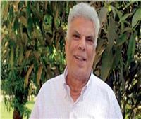 «الديهي» يناشد بدعم إبراهيم عبد المجيد في مرضه: «ضلع أساسي في الحياة الثقافية»