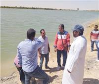 التوسع في الرقعة الخضراء وتحسين معيشة أهل سيناء