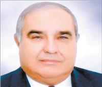 رئيس المحكمة الدستورية: الرئيس أسهم فى دعم القضاء ليصبح مواكباً للتقدم التكنولوجى