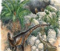 اكتشاف ديناصور «قزم» بحجم دجاجة وذيله بطول متر