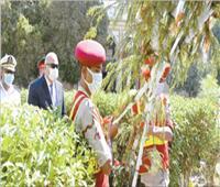 أكاليل زهور للشهداء وعروض فنية في احتفالات المصريين بذكرى العبور