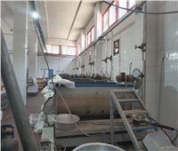 ضبط مصنع لـ «حلوى المولد» بدون ترخيص بالنوفية