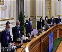 """رئيس الوزراء يستعرض عناصر المبادرة الرئاسية """"حياة كريمة"""" مع شركاء التنمية"""
