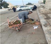 رفع 50 طن مخلفات وقمامة من قرى المنيا