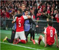 الدنمارك يحجز مقعدا في مونديال 2022 بـ«هدف» في النمسا