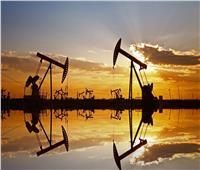 لأول مرة.. وكالة الطاقة الدولية تتوقع انخفاضا في الطلب على النفط