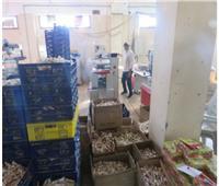 مداهمة 6 مصانع لإنتاج حلوى المولد بالشرقية