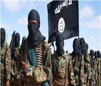 نيجيريا تعلن مقتل زعيم تنظيم داعش الإرهابي بغرب أفريقيا