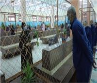 زيارة استثنائية لنزلاءالسجون بمناسبة الاحتفال بذكرى المولد النبوي