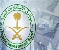 صندوق الاستثمارات العامة السعودي يطلق مشروعا سياحيا بمنطقة الخليج العربي