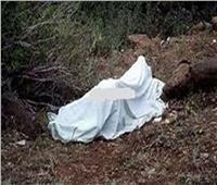 كشف لغز مقتل تاجر بالبحيرة.. قتله طالب بعدما ضبطه فى وضع مخل مع والدته