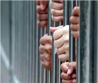 ضبط المتهمين بإلقاء «حمير مسلوخة» في مصرف بالشرقية