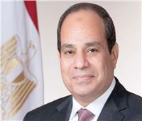 الرئيس السيسي: نصيب الفرد من المياه في مصر لا يتجاوز 560 مترًا سنويًا