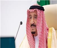 العاهل السعودي يرأس وفد بلاده في قمة قادة مجموعة العشرين