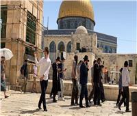 مُستوطنون يؤدون صلوات تلمودية في باحات الأقصى بحماية الاحتلال الإسرائيلي