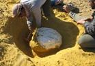 ضبط 13 شخصا بينهم سوداني بتهمة التنقيب عن الذهب بأسوان