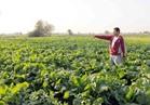 «الزراعة» بدء مسابقة إختيار أفضل جمعيات تعاونية بالمحافظات
