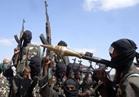 النيجر تقتل 57 عضوا من جماعة بوكو حرام