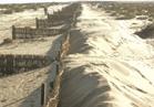 مواجهة التغيرات المناخية بـ«الطين والبوص والرمال»