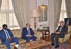 وزير الخارجية يبحث القضايا العربية مع وفد من أعضاء البرلمان العربي