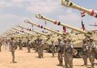 صحيفة إماراتية: جيش مصر قادر على صنع النصر ضد الإرهاب