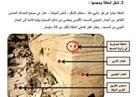 «رئيس المخطوطات بالأقصى» يكتشف حلقة ربط البراق بعد 1440 عاما على رحلة الرسول