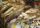 ضبط 34 طن أسماك غير صالحة خلال احتفالات الربيع بالمحافظات