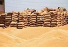 فيديو..التموين: حققنا 80% من المستهدف لتوريد القمح الموسم الحالي