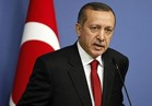 أردوغان: عرضت علي بوتين صورا لعسكريين روس شمال سوريا