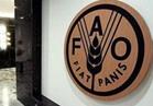 """""""الفاو"""" تحذر من مغبة وفاة الملايين جوعا في الكونغو الديمقراطية"""