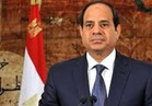 بالفيديو  السيسي: سيناء تشهد عددا كبيرا من المشروعات لخدمة الأهالي