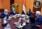 سحر نصر تبحث مع وفد المنطقة الاقتصادية البولندية زيادة استثماراته في مصر