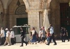 جولات استفزازية للمستوطنين داخل المسجد الأقصى