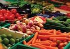 228 مليون دولار صادرات الإسماعيلية من المنتجات الزراعية