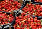 الحاصلات الزراعية يتوقع رفع الإمارات والسعودية الحظر عن صادرات الفراولة والفلفل