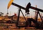 أوبك : تزايد  الطلب على النفط خلال النصف الثاني 2017..وإنتاج  32.87مليون برميل يوميا