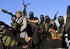 تنظيم «داعش» الإرهابي يعلن مسؤوليته عن هجوم كامبريلس