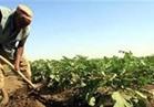 صرف 5 ملايين جنيه تعويضات لـ33 مزارعًا بسيناء الأسبوع المقبل