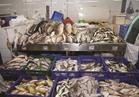 أسعار الأسماك| البلطي بـ 20 جنيهاً.. والوقار يبدأ من 40 جنيهاً
