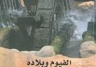 الفيوم وبلاده أحدث إصدارات هيئة الكتاب