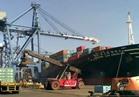 ميناء غرب بورسعيد يستقبل 1100 رأس ماشية حية
