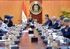 الهيئة العامة للاستثمار: تطوير وتنمية المناطق الاستثمارية ببنها والصف وميت غمر